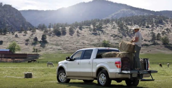 2013 Ford F-150 King Ranch Exterior Rear End